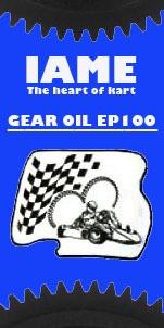 Öl für Ausgleichsgetriebe IAME Parilla Reedster 100ml EP100